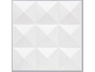 Lot de 6 plaques stickers relief Pic Blanc