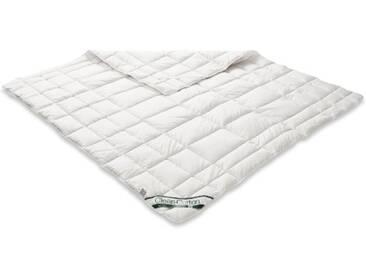Badenia Bettcomfort 03882184154 Clean Cotton Surmatelas Env. 200 x 200 cm Blanc