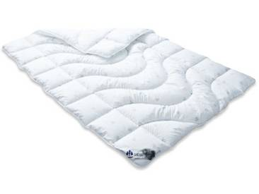 Badenia Bettcomfort 03 631 840 140 Couette Irisette Dreams Mono 135 x 200 cm