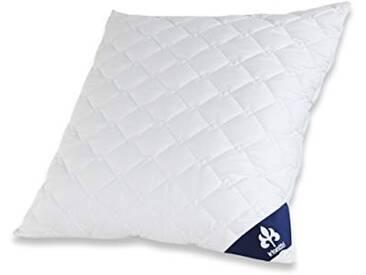 Badenia Bettcomfort 03840850123 Irisette Micro Thermo Oreiller 80 x 80 cm Blanc