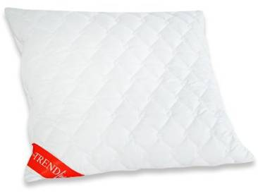 Badenia Bettcomfort 03772030123 Trendline Micro Oreiller Lavable à 95° 80 x 80 cm Blanc
